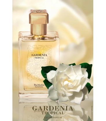 Gardenia Tropical Paul Emilien