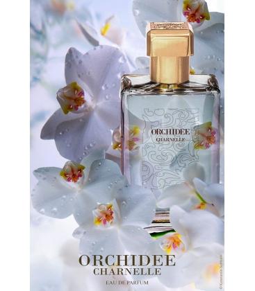 Orchidee Charnelle Paul Emilien