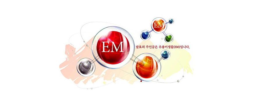 Что такое EM?