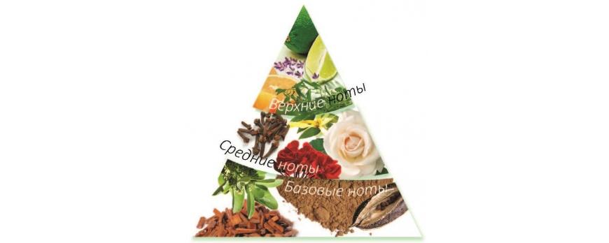 Ольфакторная пирамида. Ноты аромата